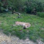 Photo of Zagreb Zoo