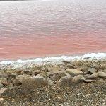 Salin d'Aigues-Mortes Foto