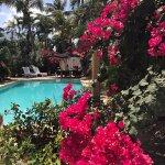 Photo de Paradera Park Aruba
