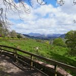 Muncaster Castle view from grounds