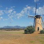 The Lily Dutch Windmill照片
