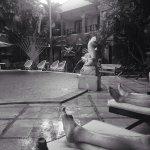 Foto de Adhi Jaya Hotel