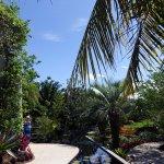 Brazilian Garden