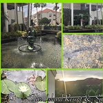 The landscaping and upkeep of this property is beautiful!