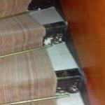 escaliers allant aux chambres