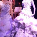 The wedding dress for Katniss
