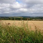 2016 Wheal Rodney campsite and local footpaths