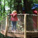 La Hutte : au coeur de la forêt se dresse une cabane suspendue dans les arbres aux mille couleur