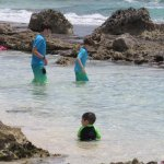 great beach with tidal pools
