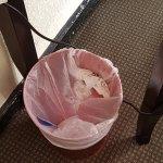 Uncleaned dustbin