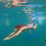 Snorkeling at the Pelicans Rock