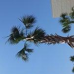 Foto de Sonesta Resort Hilton Head Island