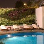 Piscina totalmente renovada y con un precioso jardín vertical