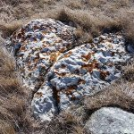 Majourville Cairn and Medicine Wheel
