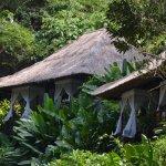 Photo of Maya Ubud Resort & Spa