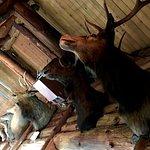 Saddle Peak Lodge의 사진