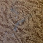 Carpet stains. Our friends had same in their rm on a diff floor!