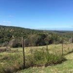 Photo of Kariega Game Reserve - The Homestead