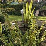 Stratton Gardens Guest House Foto