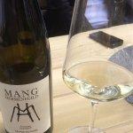 Lovely Federspiel Grüner Veltlinger at Mang vineyard