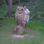 Lots of tree carvings in the park.