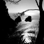 Photo de I Faraglioni