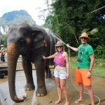 Close interaction with the elephants