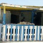 esta es la casita que les hable, venden esas ostras para llevar de recuerdo, a mucho menos de un