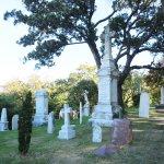 Photo of Bolton Street Cemetery