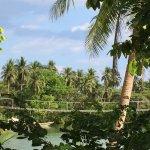 Photo of Loboc River Resort