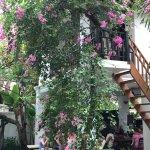 Foto de Rambutan Hotel Siem Reap