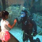 Hi, Mr. Scuba Diver!