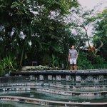 Villa Air Bali Boutique Resort & Spa Foto