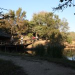Marc's Treehouse Lodge Foto
