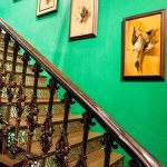 Staircase & series of game birds paitings
