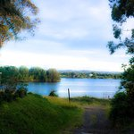 The Manning River behind the Motel, the clean and thoughtfully appointed room, gorilla folded to