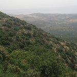 Photo of Amirim Atmosphere