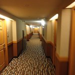 The hallway as we were leaving the room for the elevator