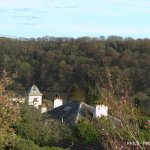 View from the garden across the village to the millpond