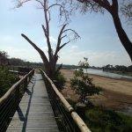 Mapungubwe National Park ภาพ