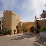Photo of Sun Palm