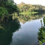 Foto de Panama Canal Tours