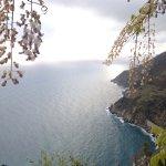Photo of Il Borgo di Campi