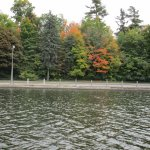Scenery from Rideau Canal Cruise.