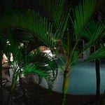 Photo de Tropical Oceano Praia