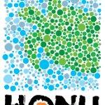 Honu, is Hawaiian for Green Sea Turtle.