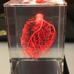 Some stuff inside your heart!