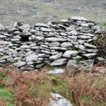 one of the hives… Or a stone wall ????