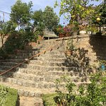 Photo of Terrasse des Roses