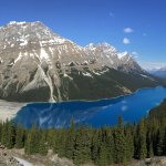 Peyto Lake from Trail near main lookout